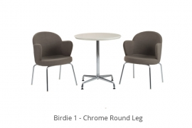 birdie-1-1