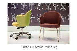 birdie-1-4