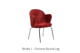 birdie-1