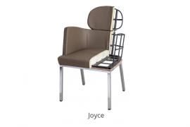 30-Joyce